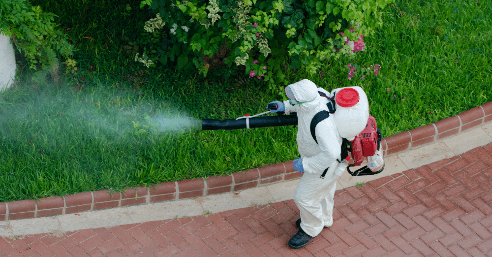 İtalya'da belediyeler pestisit kullanımını yasaklayabilecek