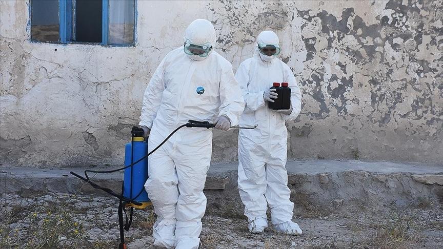 Anadolu Ajansı – Kaldırımdaki otlarla mücadelede kullanılan kimyasalların 'kanser' riski taşıdığı iddiası
